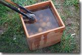 brentwood box and potatos